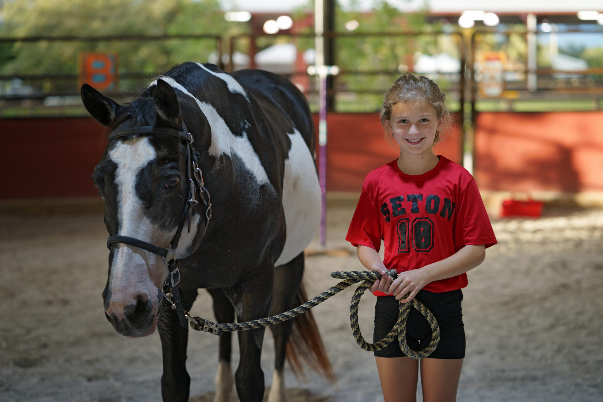 Avow Kids Equine Therapy